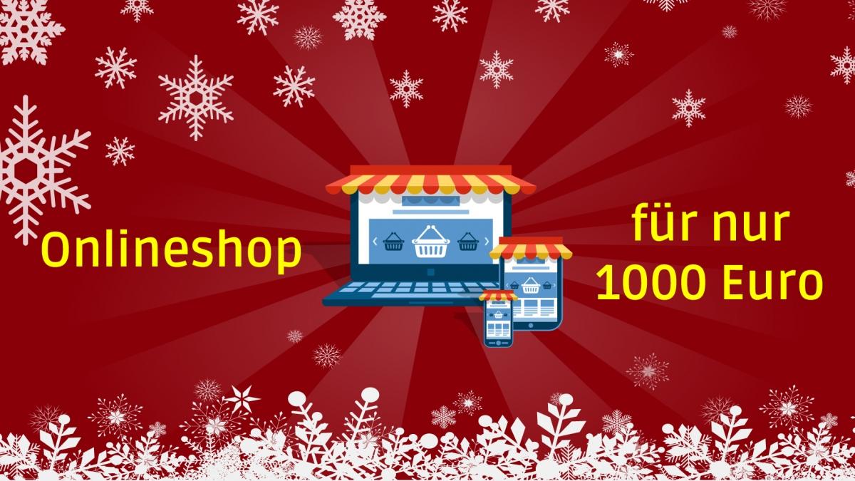 Weihnachtsaktion – Online-Shop für nur 1000 Euro!*